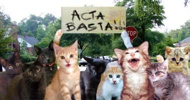 ACTA Manif-acta